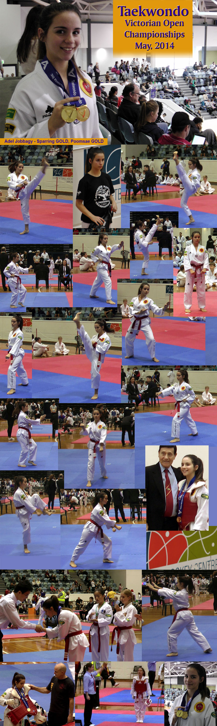 Adel 2 x Gold Medals Vic Open Ch May 2014